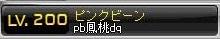 Maple151205_170423 (2)