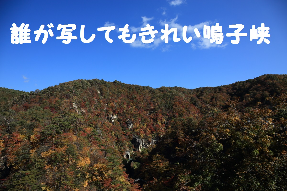 15_201511041553550ca.jpg