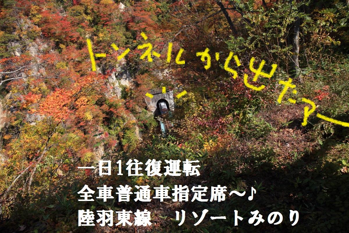 1_201510302159177e3.jpg