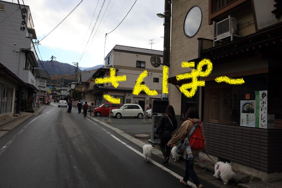 2K5A0764.jpg