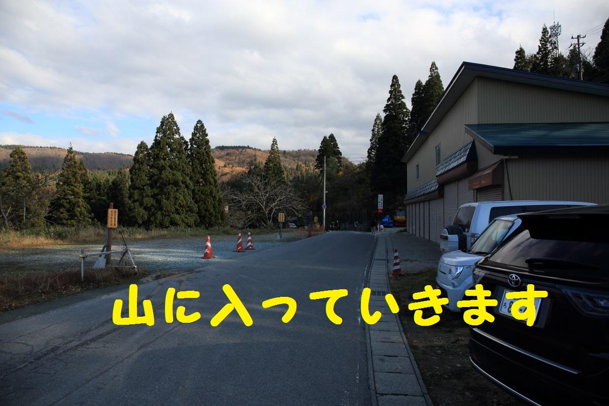 2_20151114205410263.jpg