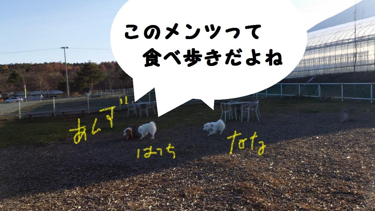 2_20151121022253210.jpg