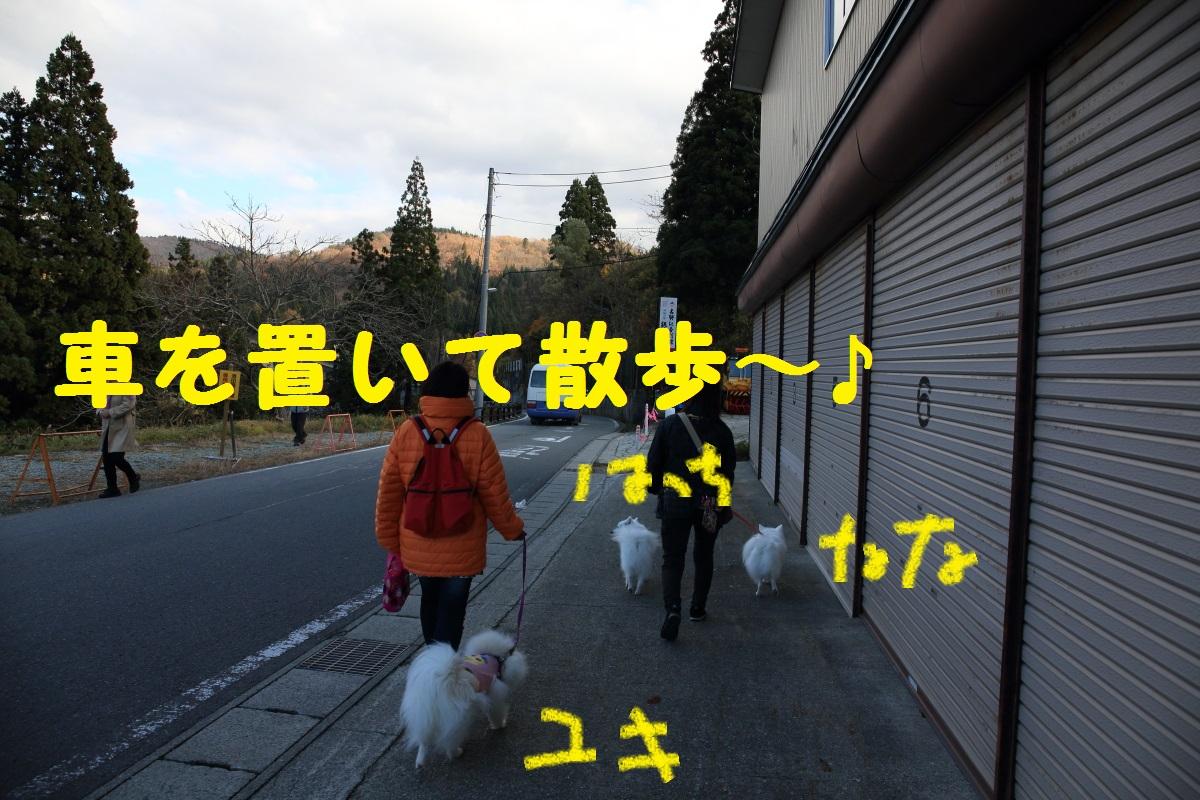 3_20151114205409875.jpg