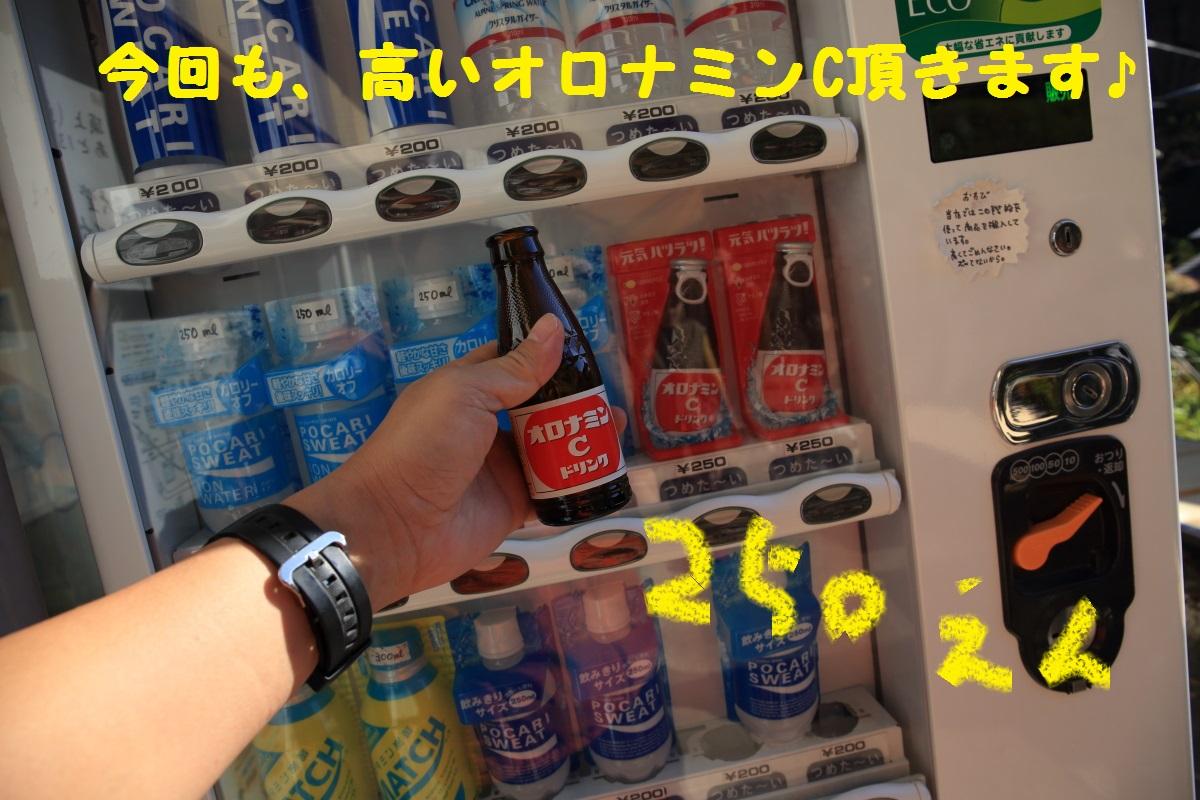 5_20151112094247a04.jpg