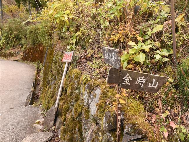 植物園・夕日の滝 103