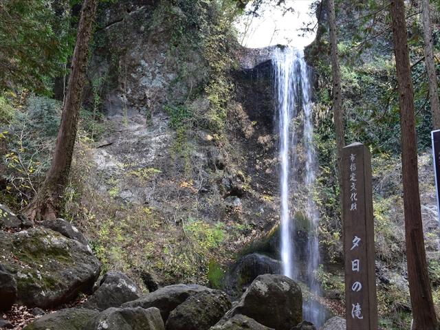 植物園・夕日の滝 119
