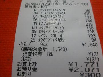 mini_DSC02992.jpg