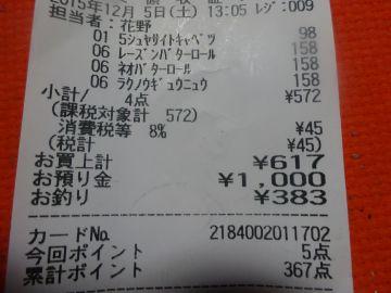 mini_DSC03099.jpg