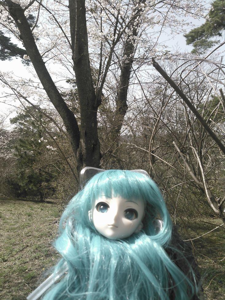 花見三神峯1