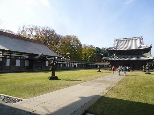1512toyama2009.jpg