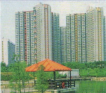 香港・6回目(沙田)⑦-3