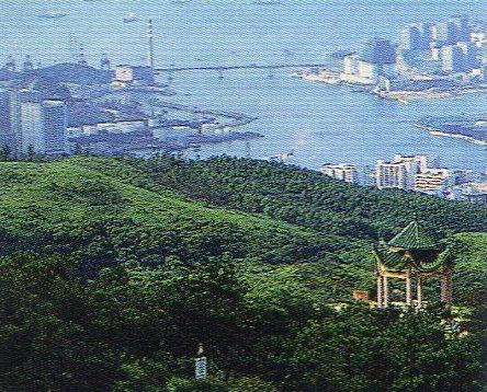 香港・6回目(沙田)⑦-4