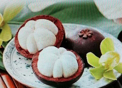 香港果物⑫マンゴスチン2-1
