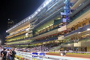 ハピーバレー競馬場(スタンドは地上7階建て。)