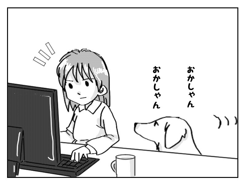 パソコン中に呼びかける飼い犬アーティ