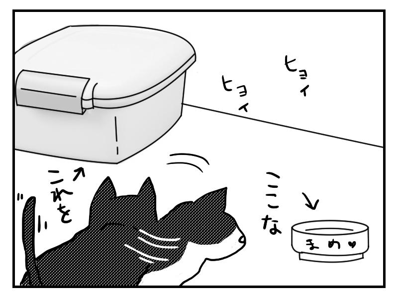 フードストッカーから猫のご飯入れに猫に誘導される