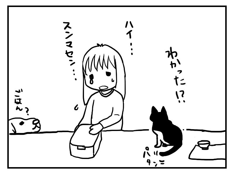 猫の方がしっかりしていてしぼむ飼い主