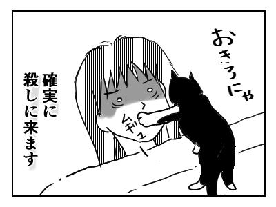 そのうえ、飼い主を起こそうと、飼い猫のまめが口を押えて窒息させようとします