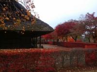 秋の古民家