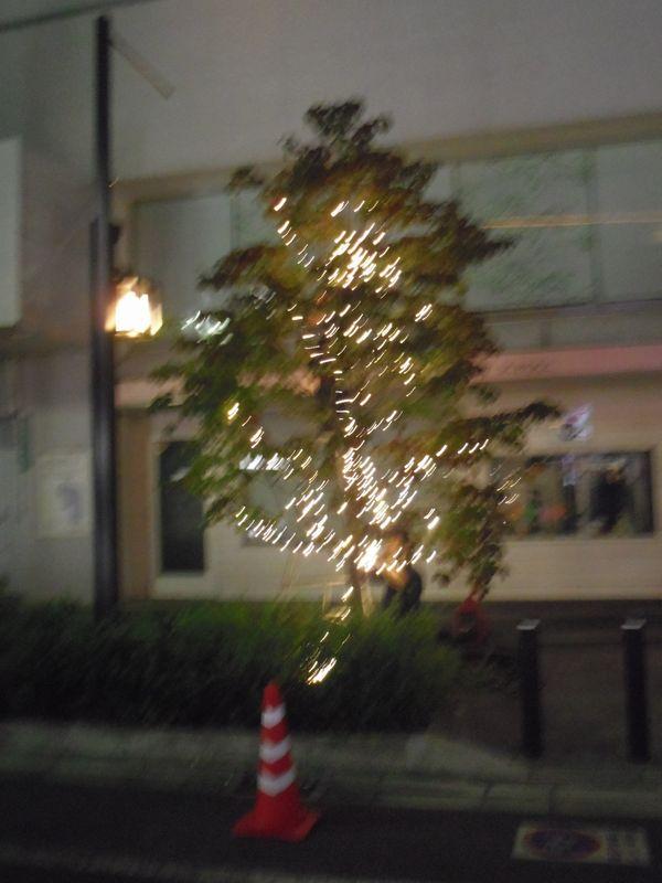 hikari_20151028010550bef.jpg