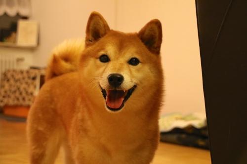 asuka smile