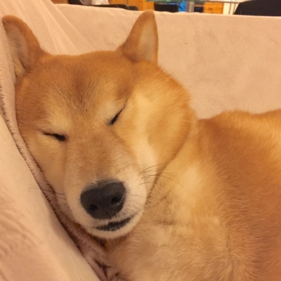 ちょっと間の抜けたアスカの寝顔