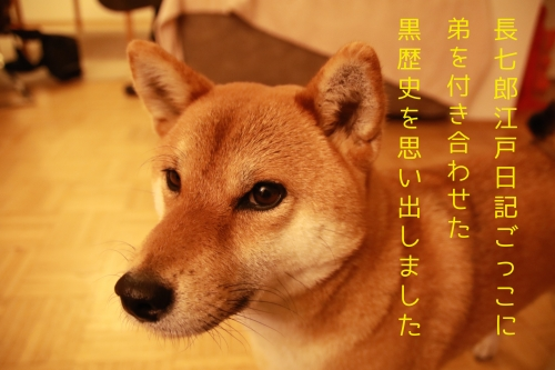 長七郎江戸日記ごっこ
