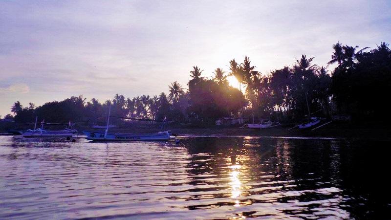 ロビナの朝日の画像