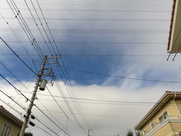 びぃなむ1127-02