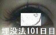 1012.jpg