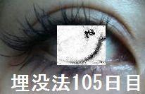 105days.jpg