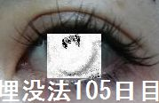 105days3.jpg
