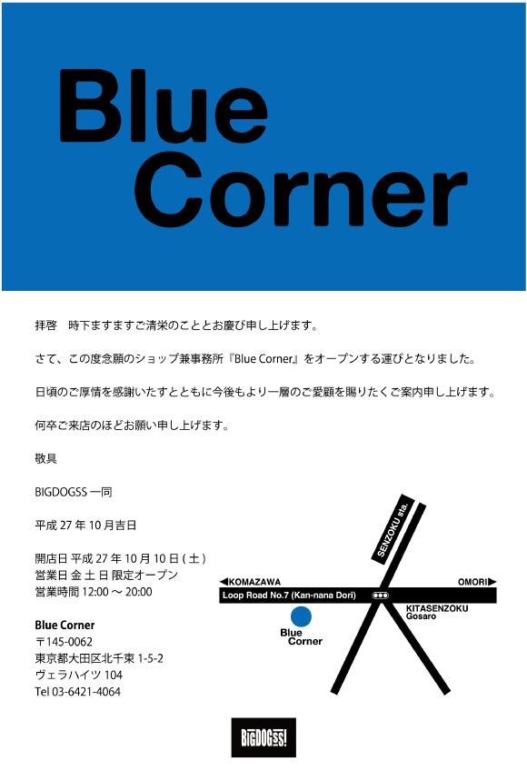 BlueConer-web.jpg