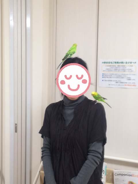 お悩み相談会20151108-7
