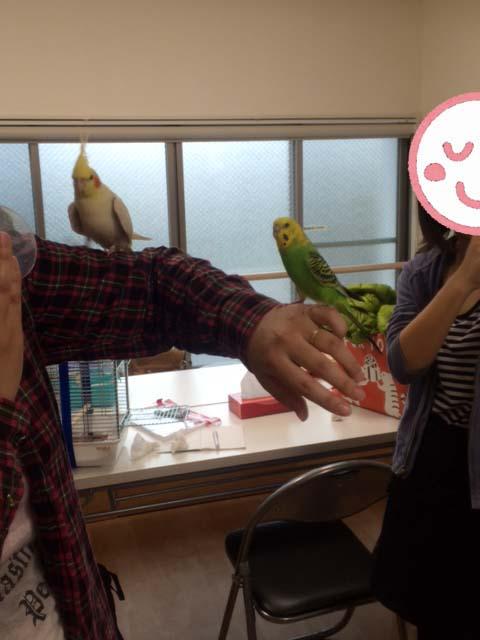 お悩み相談会20151108-12