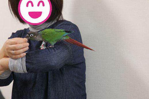 お悩み相談会7-20151129