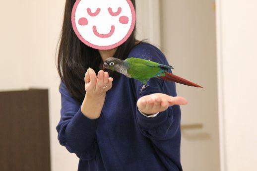 お悩み相談会9-20151129