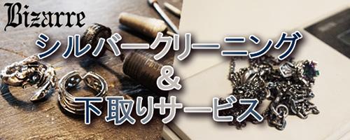 2015cleaning-shitadori_500200.jpg