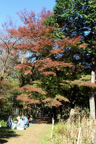 IMG_2116嵐山