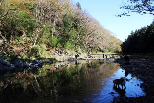 IMG_2142嵐山