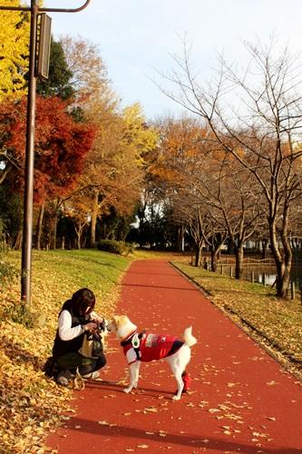 IMG_2340総合公園