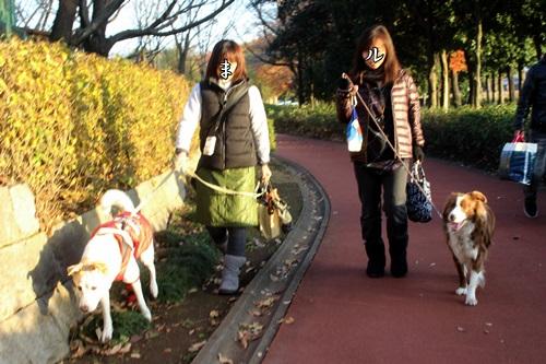 IMG_2354総合公園