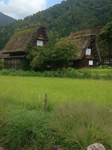 飛騨高山 (67) (コピー)