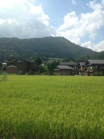 飛騨高山 (73) (コピー)