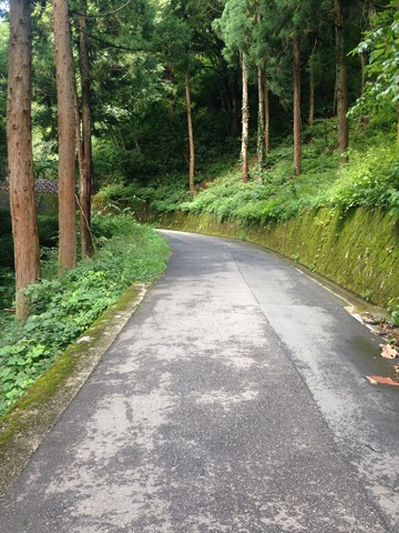 飛騨高山 (78) (コピー)