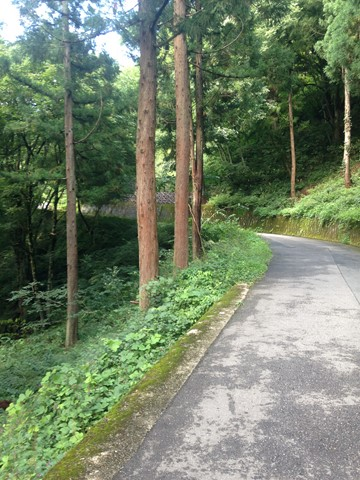飛騨高山 (79) (コピー)