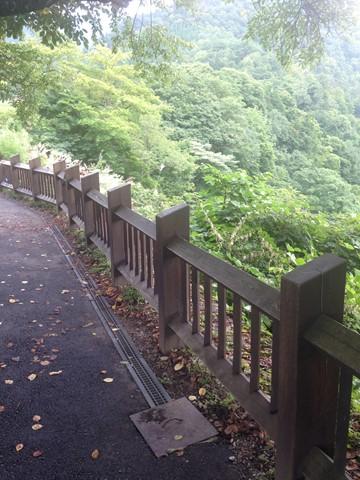 飛騨高山 (100) (コピー)