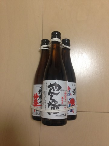 飛騨高山 (170) (コピー)
