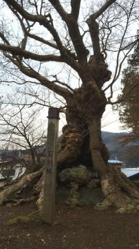鶴の湯 (4)_600