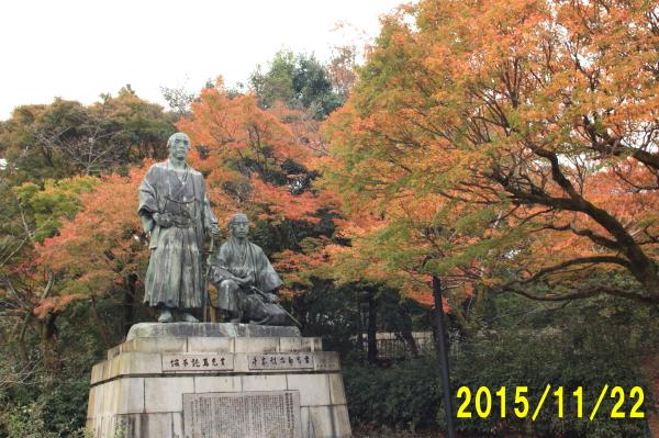 20151122_151_1.jpg